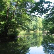 milicz-park-staw-1.jpg