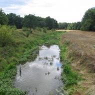 milicz-rzeka-barycz_0.jpg