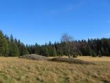 mlynska-kamienne-kopce-2.jpg