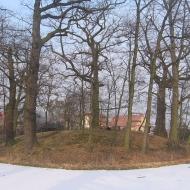 molestowice-grodzisko-2