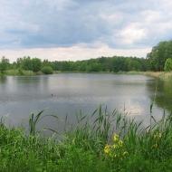mozdzanow-stawy-9e