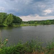 mozdzanow-stawy-9f
