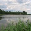 mozdzanow-stawy-5