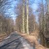 murow-droga-do-czarnej-wody-i-struga