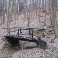 muszkowicki-las-bukowy-zameczny-potok-mostek