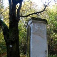 nowolesie-kapliczka-w-lesie.jpg