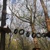 obora-arboretum-park-linowy-1