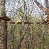 obora-arboretum-park-linowy-4