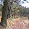 obora-arboretum-zaczarowany-ogrod-1