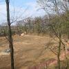obora-arboretum-zaczarowany-ogrod-2