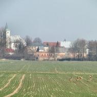 olesnica-mala-niemil-14