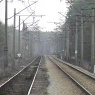 orzeszkow-rez-uroczysko-wrzosy-07