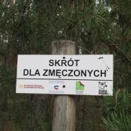orzeszkow-rez-uroczysko-wrzosy-26