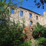 pankow-ruiny-zamku-9