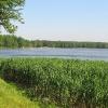 paprocany-jezioro-paprocanskie-1