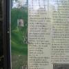 pszczyna-park-zamkowy-herbaciarnia-tablica