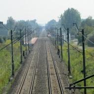 pegow-ul-kasztanowa-03