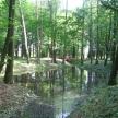 pogrzybow-palac-park-2