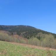 poreba-lesnictwo-widok-na-jagodna