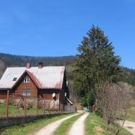 poreba-lesnictwo-widok