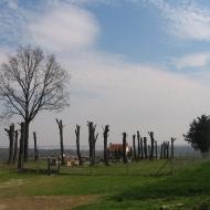 pozarzysko-cmentarz