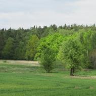 prochowice-jaskowice-legnickie-14