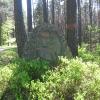 wilczy-kamien-2