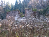 przelecz-pod-bzowcem-ruiny.jpg