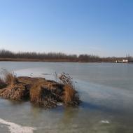 przyszowice-jezioro-farskie-2