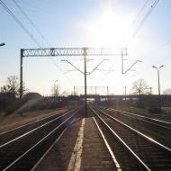 psie-pole-stacja-1