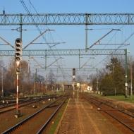 psie-pole-stacja-4
