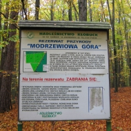 rezerwat-modrzewiowa-gora-1.jpg