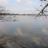 rezerwat-lezczok-staw-babiczak-2