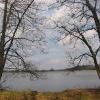 rezerwat-lezczok-staw-babiczak-3