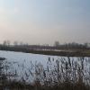 nowa-kuznia-rezerwat-staw-nowokuznicki-2