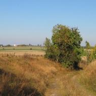 roszkowice-widok-2