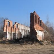 rzeczyce-ruiny