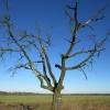 sadowice-malkowice-07