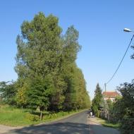 siechnice-ul-kolejowa-02