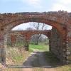 siedlimowice-ruiny-palacu-folwark-2
