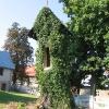 skalagi-kosciol-kapliczka