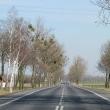skarbimierz-osiedle-malujowice-8