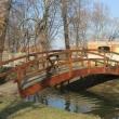 sleza-zamek-topacz-park-05