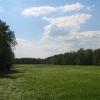 lasy-murckowskie-sobczyki-duze-laka