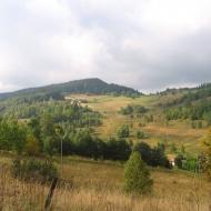 stare-bobrowniki-widok-na-ptasia-gora.jpg