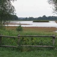 staw-borkowski-06