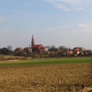 strupina-widok1