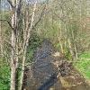 suche-rzeki-widok-5