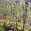 suche-rzeki-widok-9b