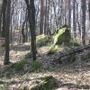 sulistrowickie-skaly-skaly
